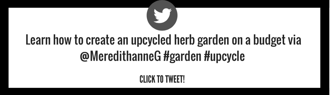 Learn how to create an upcycled herb garden on a budget!