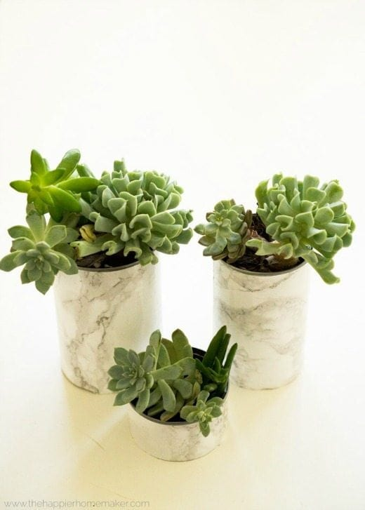 Faux Marble Succulent Planters - These DIY Faux Marble Decor tutorials are surprisingly easy and budget friendly. Whether you want to tackle a faux-finish or use marble contact paper, there are DIY ideas for every decorator | faux marble counter tops, coffee tables, and decor accessories.